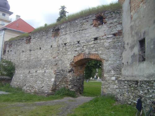 Жовква: Замок Жолкевських